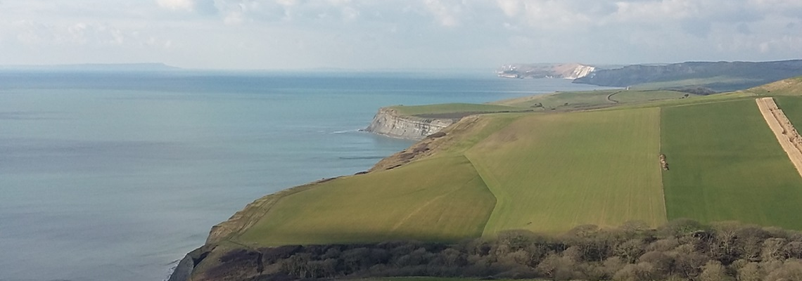 Dorset Isle of Purbeck Coastline